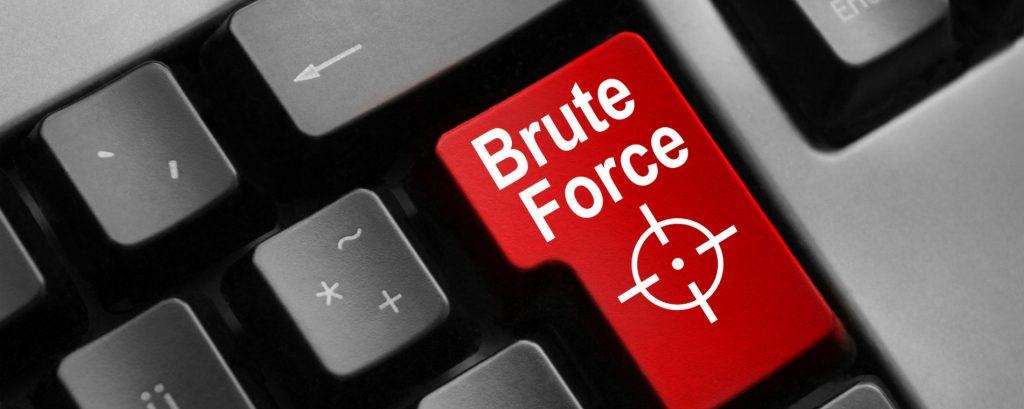 Brute Force что это